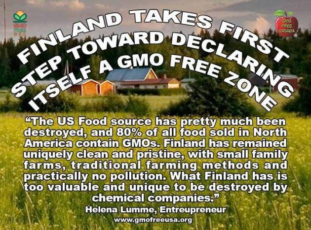 Helena Lumme The US Food Source Has