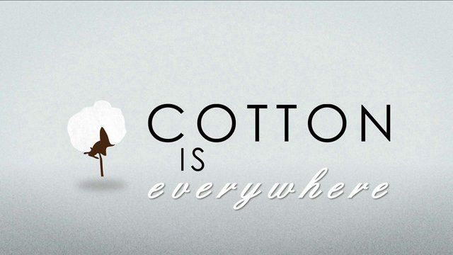 a infographic i created for the World Wildlife Fund and National Geographic about the impact the use of cotton has on the planet.  art/animation:  jamie lee godfrey script: malvina martin music: chris beaty exec prodcuers: gil pimentel & mark bauman