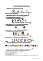 Write down the regular and irregular plural forms of the nouns - ESL worksheets