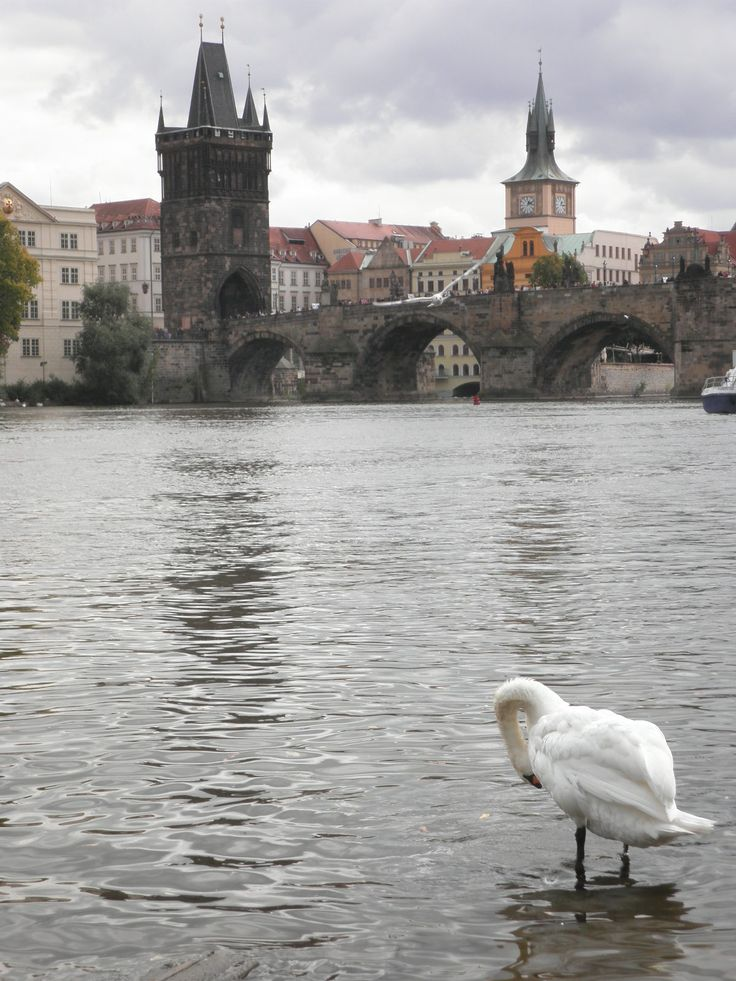 Fotografía: Mayca Blasco- Praga