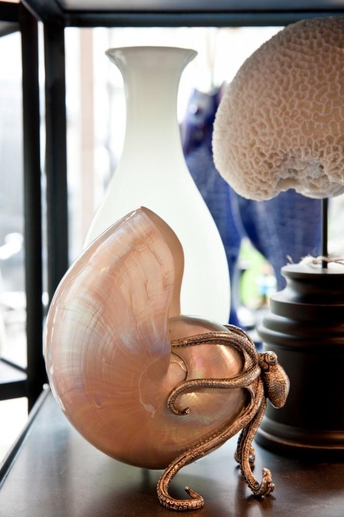 shell & octopus