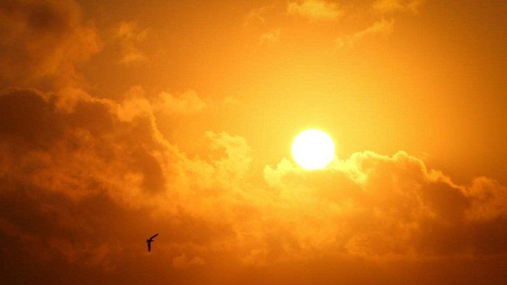 The mild heat wave would remain over Khulna division and the regions of Rajshahi, Pabna, Dhaka, Tangail, Faridpur and Rangamati, according to the latest weather forecast of Bangladesh Meteorological Department (BMD). The weather office, however, said that there are chances of rain or thunder...