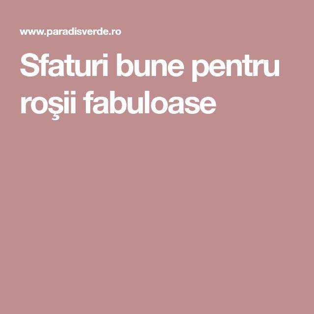 Sfaturi bune pentru roşii fabuloase