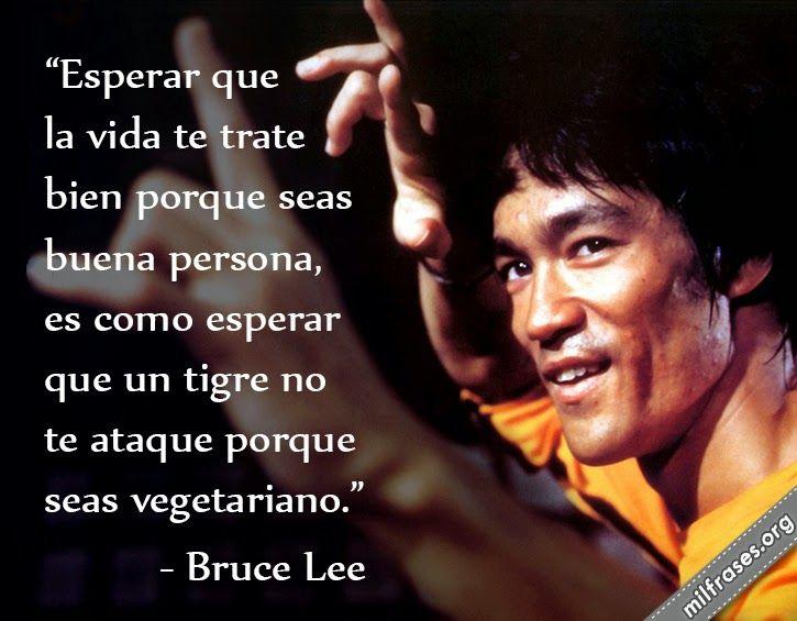 Esperar que la vida te trate bien porque seas buena persona, es como esperar que un tigre no te ataque porque seas vegetariano. - Bruce Lee