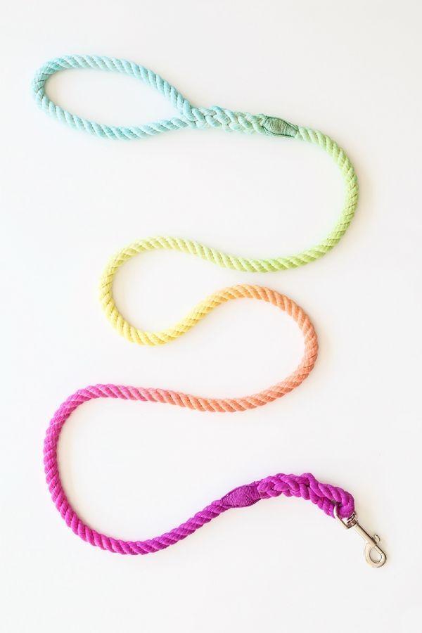 DIY Technicolor Dog Leash #diy #crafts