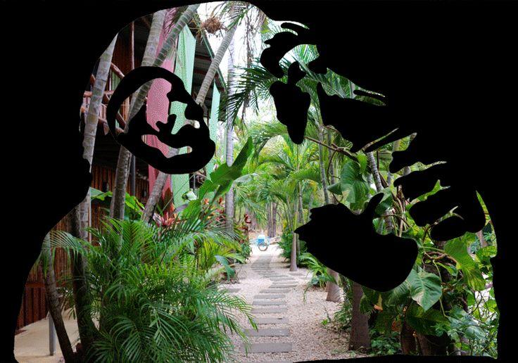 Sugar's Monkey Hotel - Playa Grande - Costa Rica #poshtel #hotel #surfhotel #playagrande #costarica