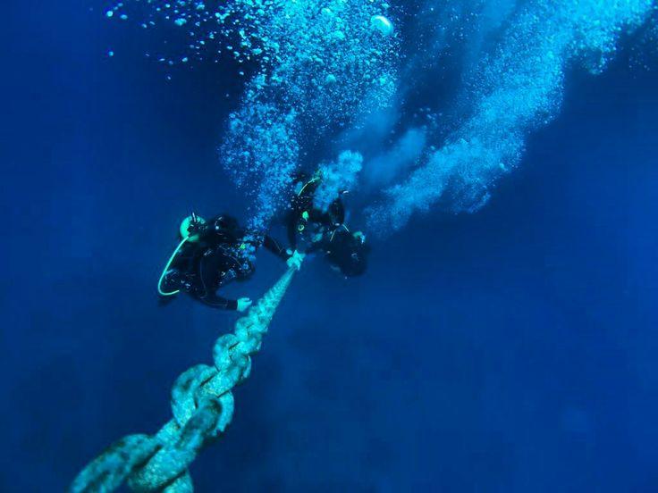 Ayvalık dalış okulu - ida dalış merkezi #scuba #scubadiving #diving #underwater #dalisnoktam #ayvalikdalis #ayvalikscuba #daliskursu #dalismerkezi #dalisokulu #idadalismerkezi #ayvalık www.idadiving.com
