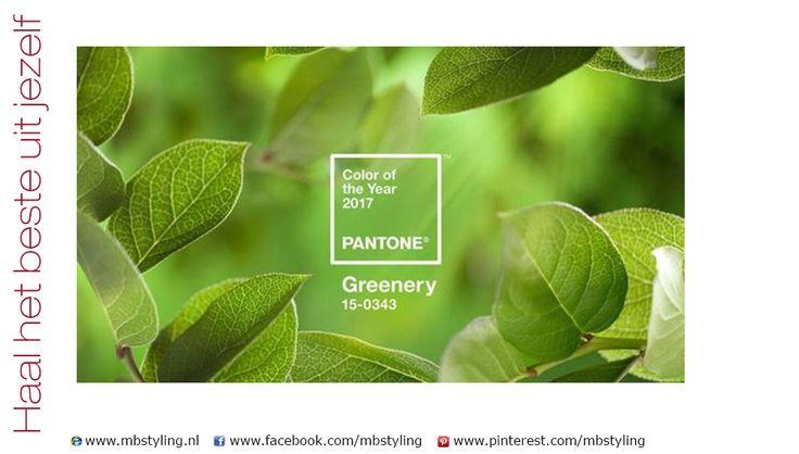 Greenery, een frisse groen gele kleur is de kleur van het jaar 2017! Lees er alles over in mijn blog:
