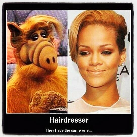 #hair #funny #facebook #twitter #hairdresser #Rihanna #Alf ~wendyosalon.com~