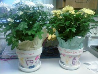 Flower pots pained by the kids