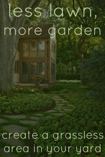 how to create microclimates in your yard