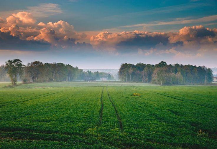 Gliwice, Ostropa. fot. J. Szymik