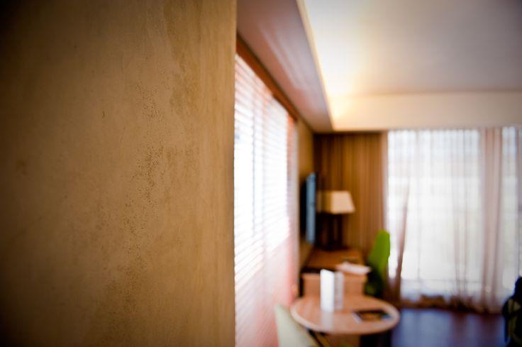 wall finishes interior walls forward cemcrete interior wall finish. Black Bedroom Furniture Sets. Home Design Ideas