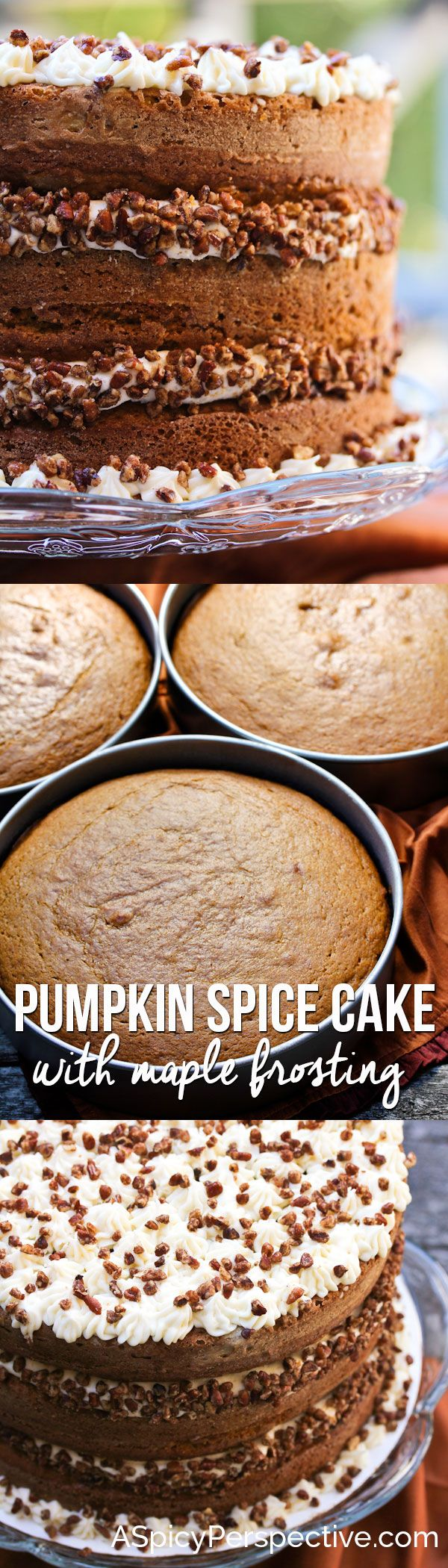 Tender Pumpkin Spice Cake with Maple Frosting on ASpicyPerspective.com