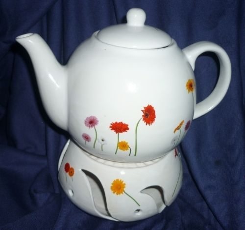 Teapot with warmer spring