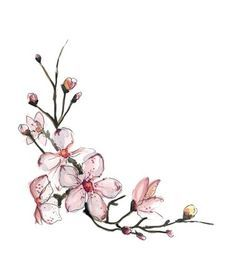 Image result for watercolour tattoo cherry blossom foot