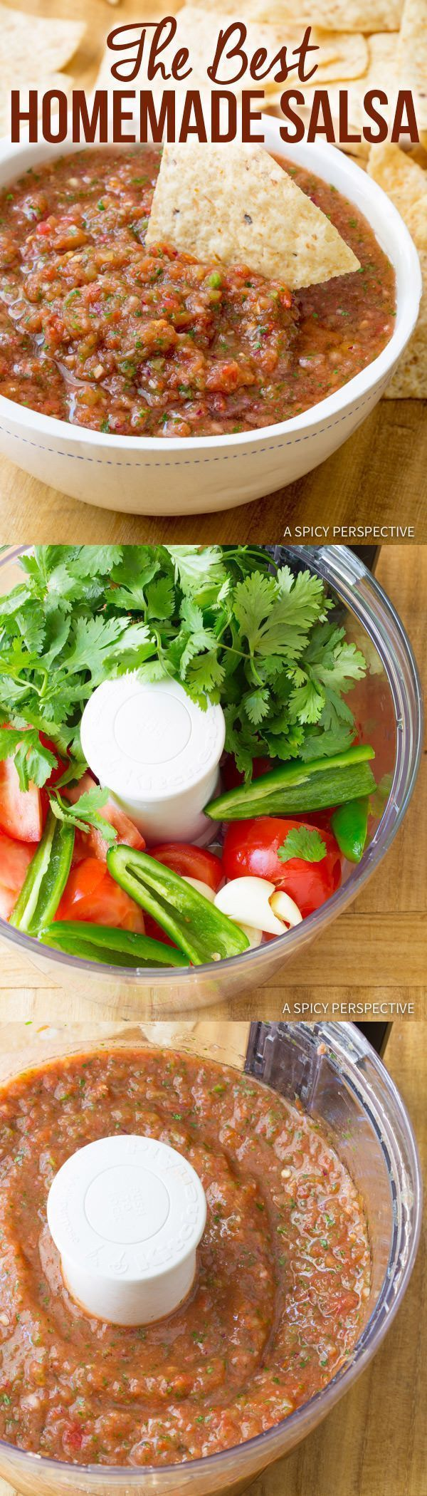 The Best Homemade Salsa Recipe Ever (Quick, Healthy & Delicious!)   ASpicyPerspective...