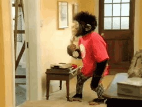 Funny Monkey Images Download Funny Gif #4061 - Funny Monkey Gifs| Funny Gifs| Monkey Gifs