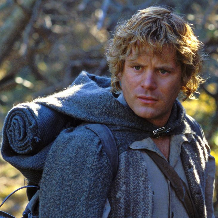 Frodo S Friend In Lord Of The Rings