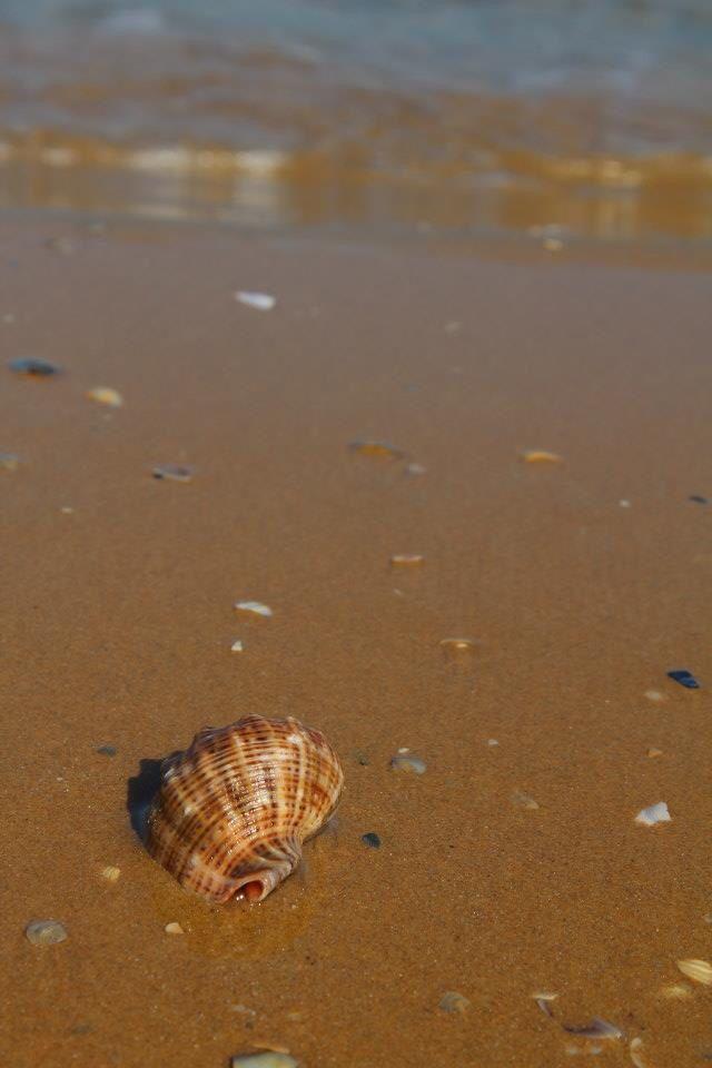 Beach!!!!
