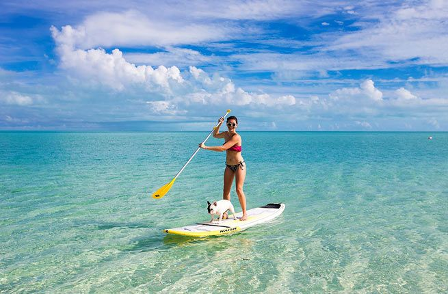 Stand-up Paddleboarding - The Turks and Caicos Islands' Top 14 Experiences   Fodor's Travel
