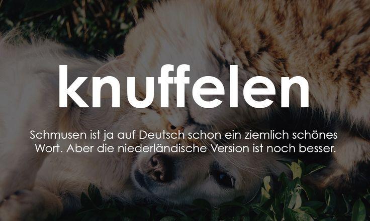 12 zuckersüße holländische Worte, die wir auch haben wollen
