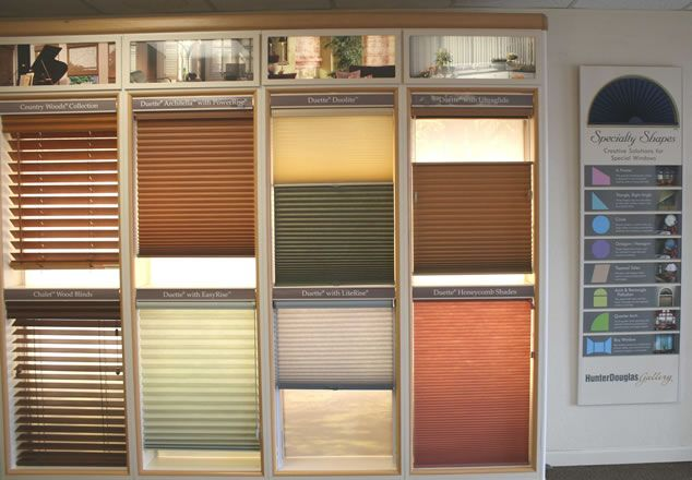 9 best budget blinds images on pinterest shades sunroom for Budget blinds motorized shades