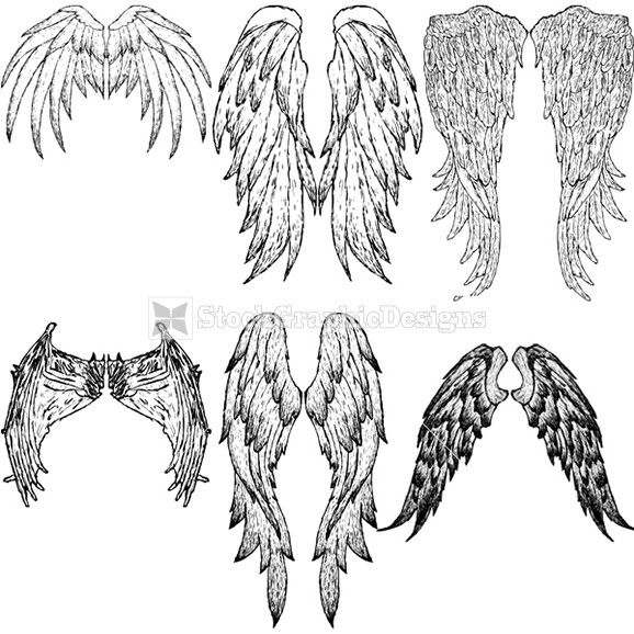 hand drawn wings vector graphics i us ti s a pinterest t towierung skizzen. Black Bedroom Furniture Sets. Home Design Ideas