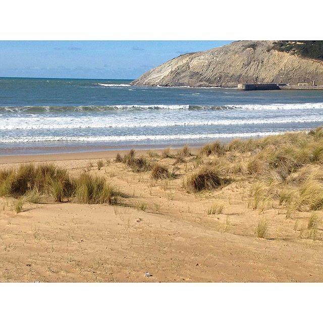 Las dunas de la Playa de Gorliz