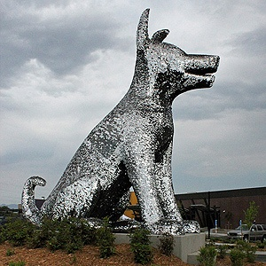 Check out this large silver dog, located at an animal shelter in Denver, Colorado