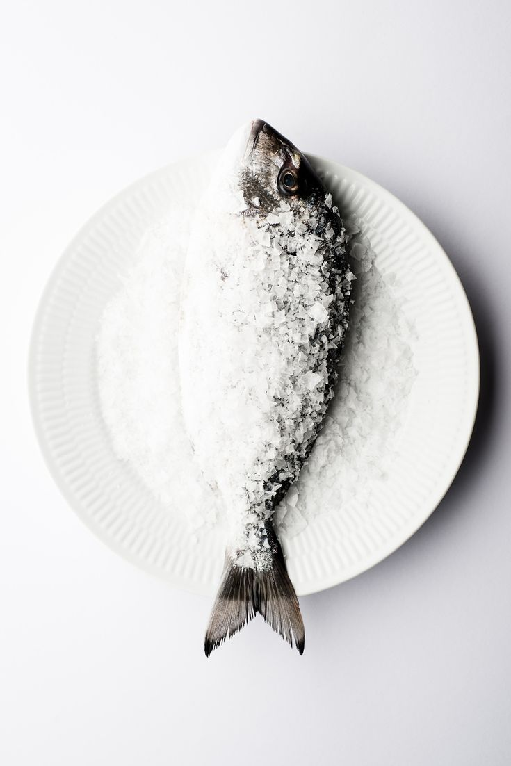 fish & salt.