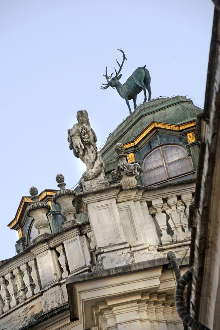 """Palazzo di Stupinigi.La palazzina di caccia di Stupinigi, alle porte di Torino, nella sua magnificenza  presentava già in periodo medievale un piccolo castello, le cui tracce sono ancora oggi visibili. Il lungo e maestoso viale, fiancheggiato da cascine e scuderie,  conduce da Torino a questa splendida residenza sormontata dalla statua del """"Cervo"""" , un luogo davvero unico di una bellezza incomparabile, immersa in  un parco di oltre 150.000 mq. (cit.Camperarcobaleno)"""