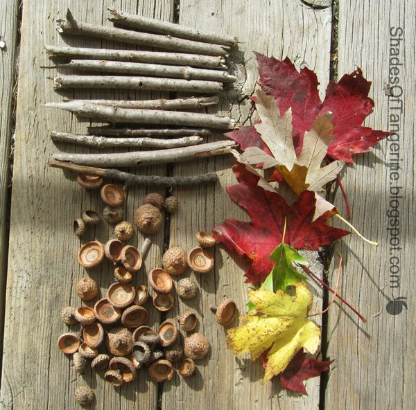 Autumn: the season of free craft supplies.  Here are the things to collect & some inspiring ideas on how to use them