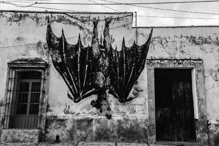 Bat by ROA - Bat by ROA in Cholula, Puebla