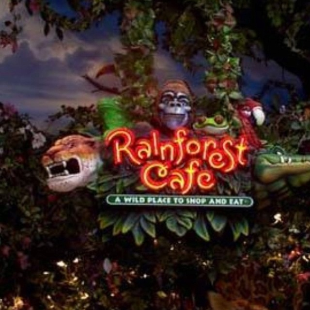 Rain Forrest Cafe! Grapevine Tx! A neat place!