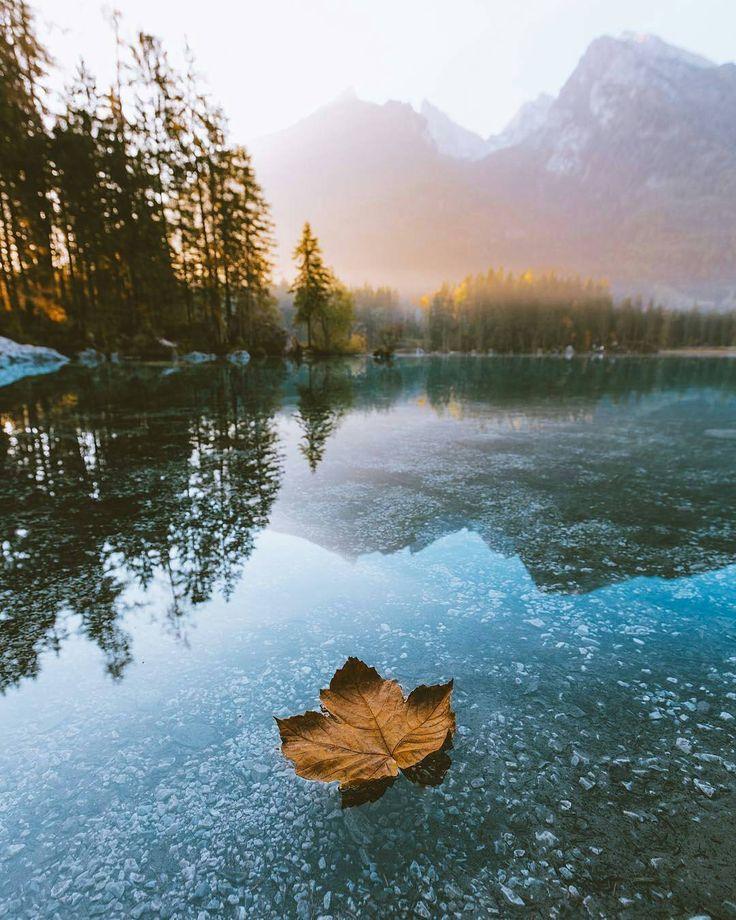 Привет сентябрь! Фото: @ravivora . #природа #озеро #люблюприроду #осень #конецлета