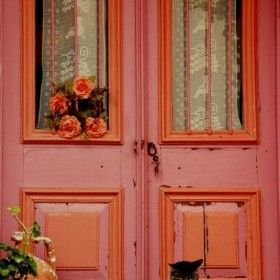 Kapı-kedi-bozcaada