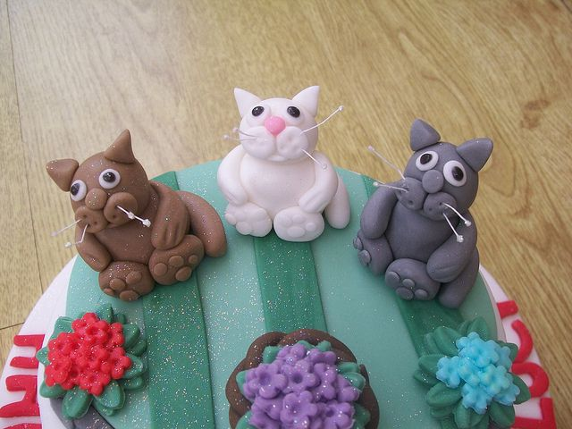 31 best Cats images on Pinterest Fondant animals Kitty cats and