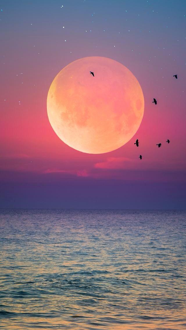 Image Result For صور للتصميم Sunset Wallpaper Landscape Wallpaper Nature Pictures