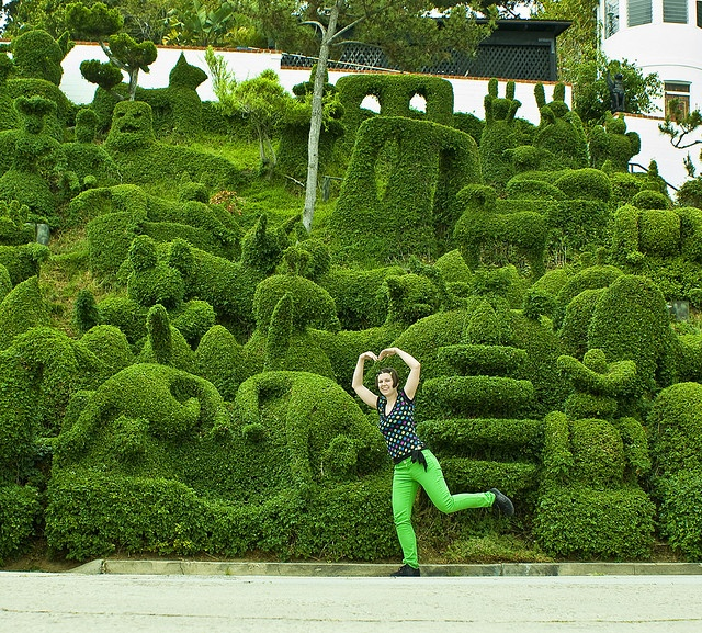 Superb Topiary Ideas Part - 10: Snoeikunst