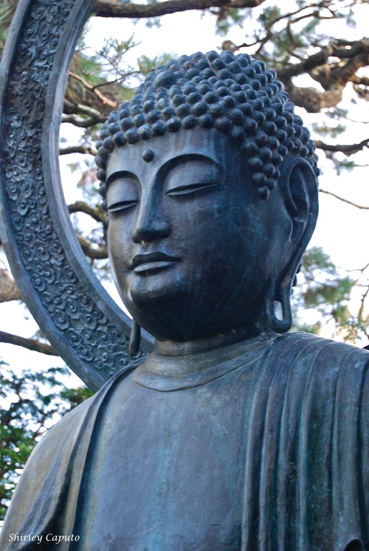 Scobey MT Buddhist Single Men