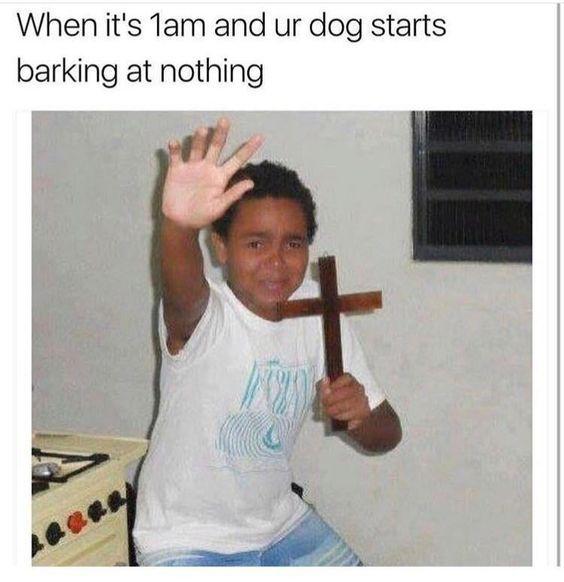 Memes 2017