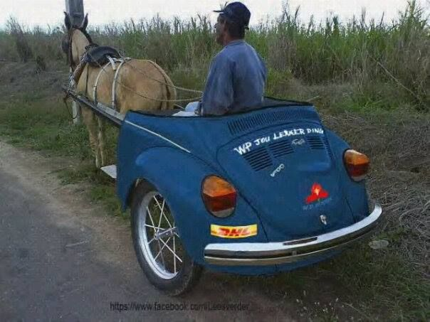 South African Limo