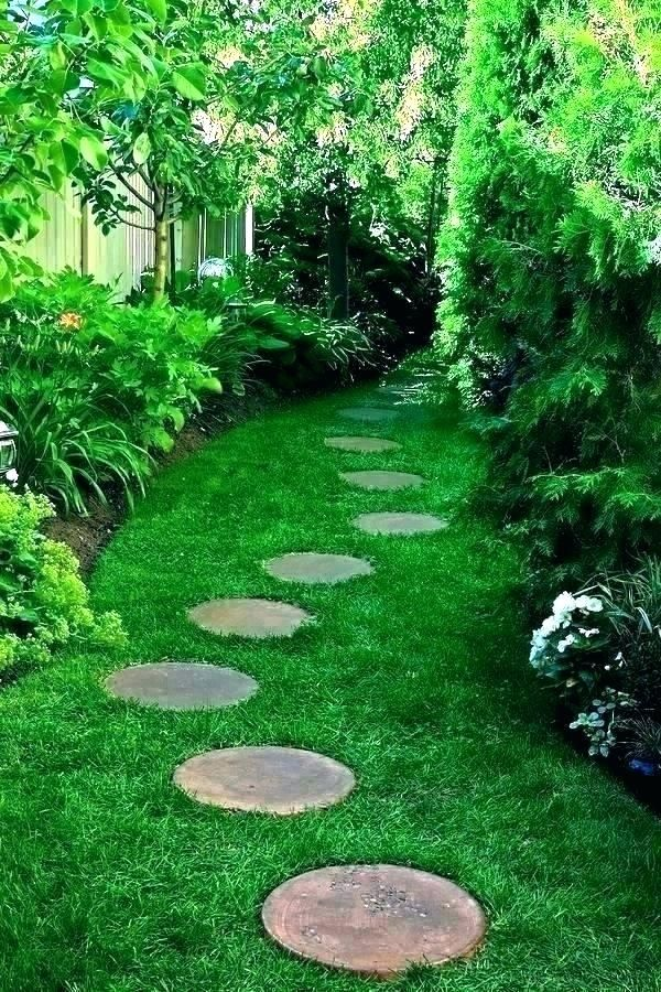 Best Ornamental Grasses And Landscape Grasses For Your Front Or Backyard Horror Underground Garden Stepping Stones Outdoor Backyard Grasses Landscaping