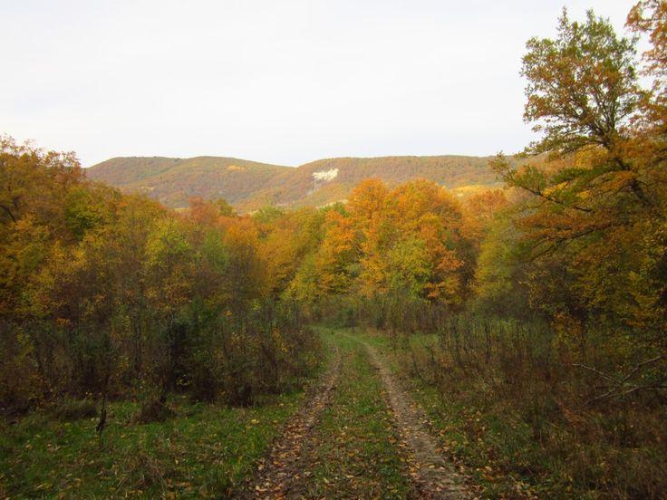 горный хребет Пшаф