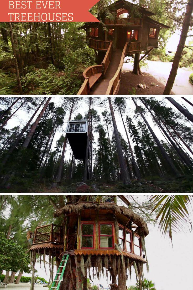Insane Tree Houses 96 best treehouse design images on pinterest | treehouses