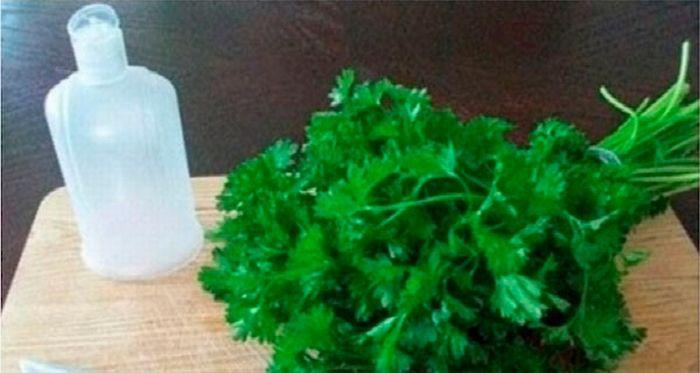 В этой статье мы собираемся представить Вам самодельный лосьон из листьев петрушки...