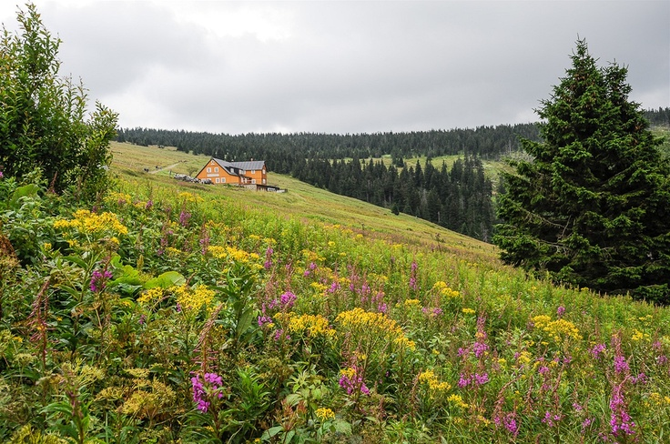 Krkonose mountains, Czech Republic