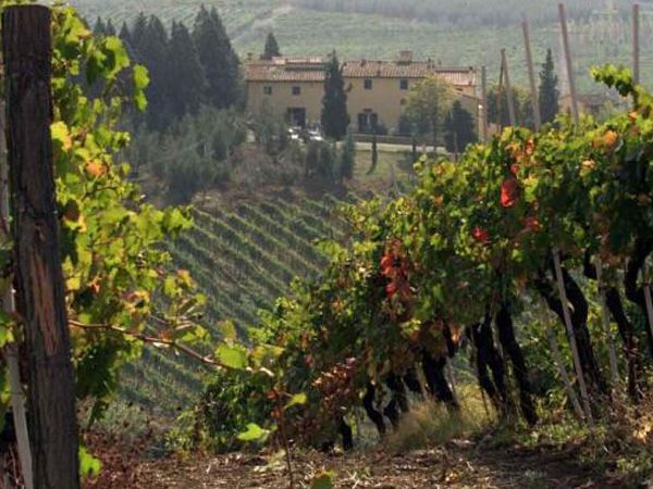 Chianti Wine Tour - Italy Tours | Walkabout Florence