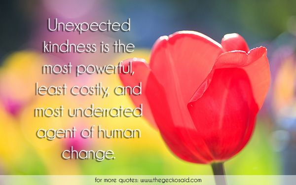 Unexpected kindness is the most powerful, least costly, and most underrated agent of human change.  #agent #change #costly #human #kindness #least #most #powerful #quotes #underrated #unexpected